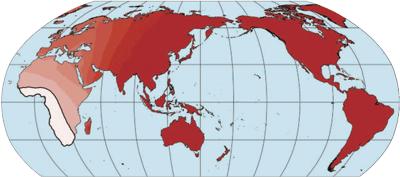 Phonologische Diversität und Entfernung zu Afrika